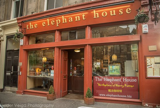 the-elephant-house